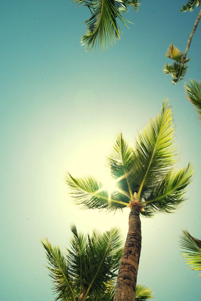 Playas de México - Barceló Stories