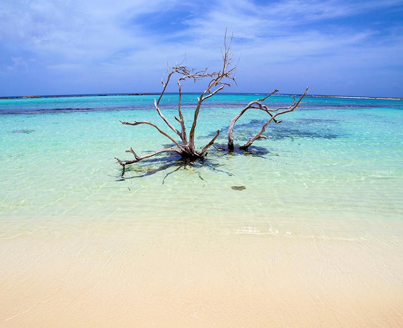 playas aruba barcelo stories