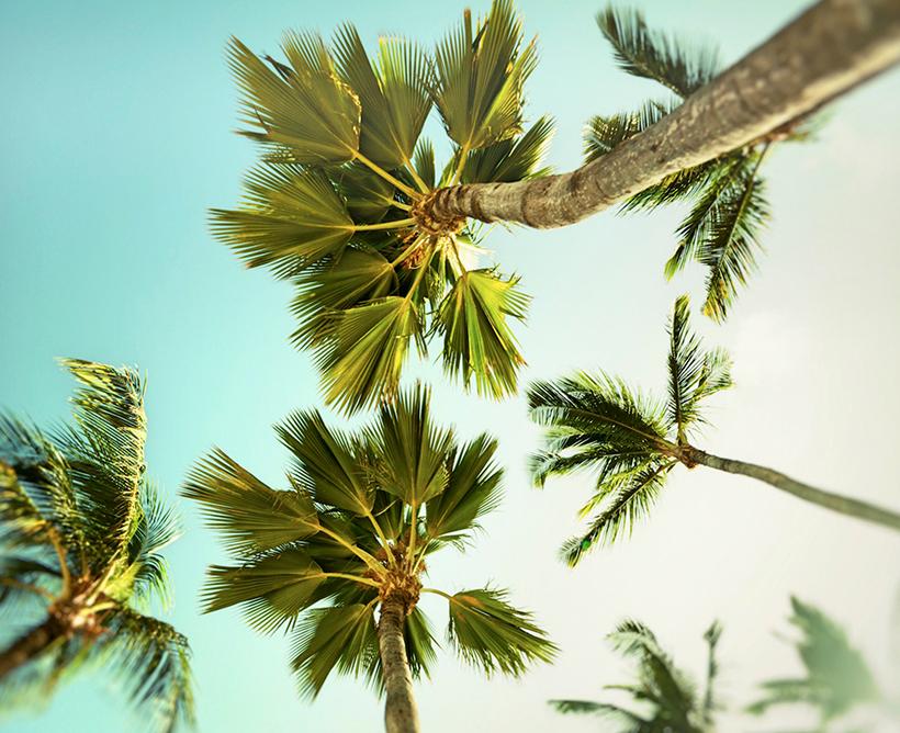 playas en el caribe aruba barcelo stories
