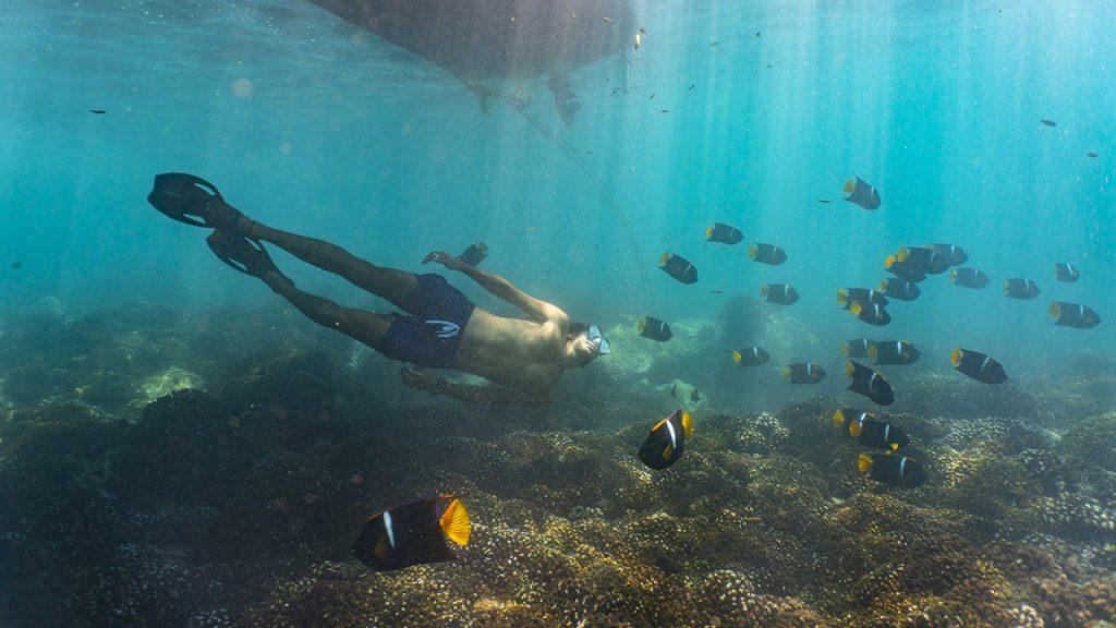 Ainda não conhece a Costa do Pacífico México? Descubra-a com @ricgm. Pura adrenalina!