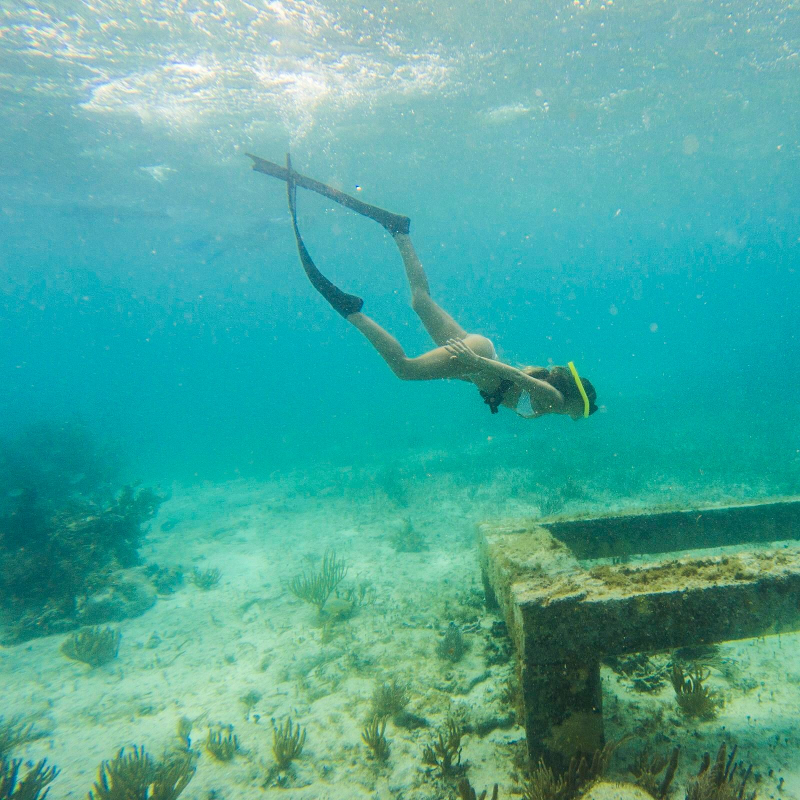 Go snorkeling in MUSA, in Cancún, Mexico, with Alex Lettrich
