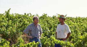 Degustación de vinos Bodegas Fontedei