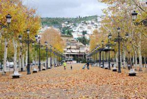 Visita Granada corriendo con personal runner 2