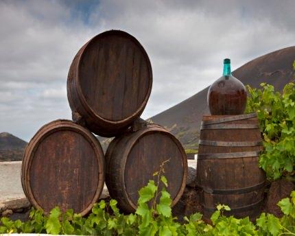 La Geria, ruta de los vinos canarios