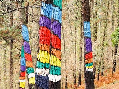 Bosque de Oma, desde Gernika