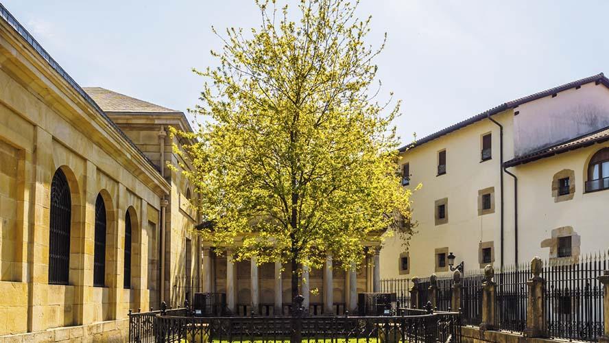 Gernika árbol