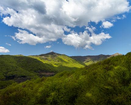 Montseny, a natural oasis near Barcelona
