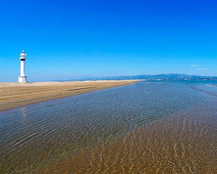 Delta del Ebro, el mayor humedal del Mediterráneo