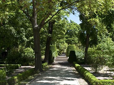 Paseo por el Jardín Botánico