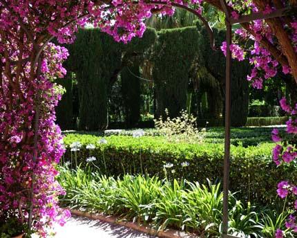 The Jardí de Montfort, the oldest gardens in Valencia