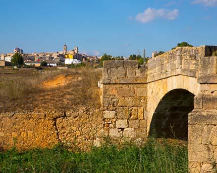 Requena, la cuna del vino de Valencia