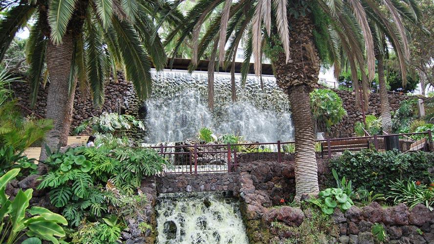jardin botanico tenerife