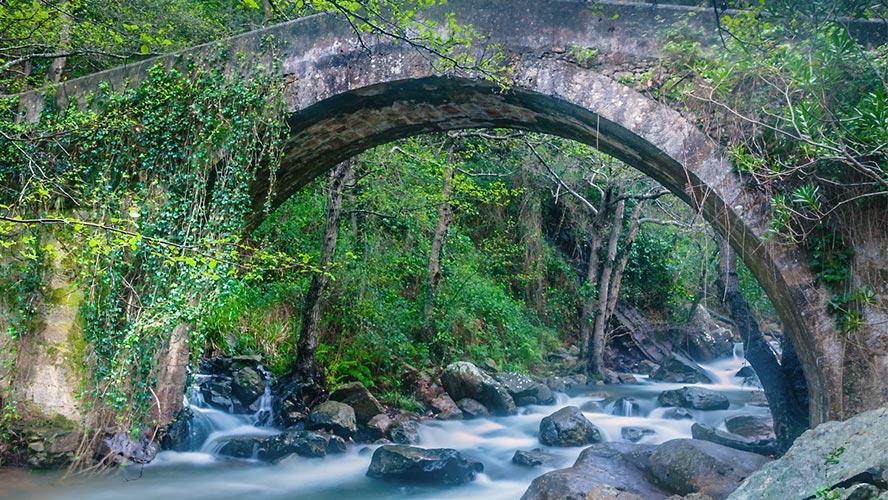 parque-natural-los-alcornocales_rio-de-la-miel
