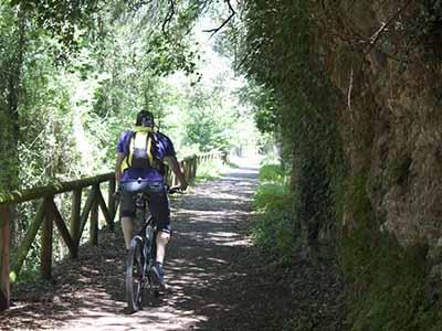 Ciclista en la Senda del Oso