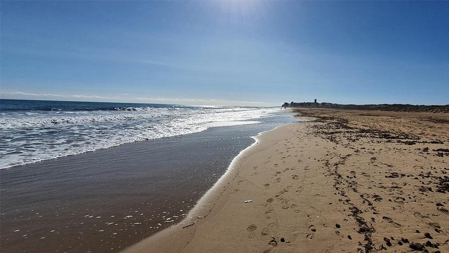 playa-de-arenales-del-sol
