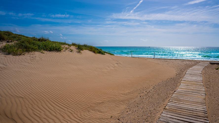playa-de-el-pinet