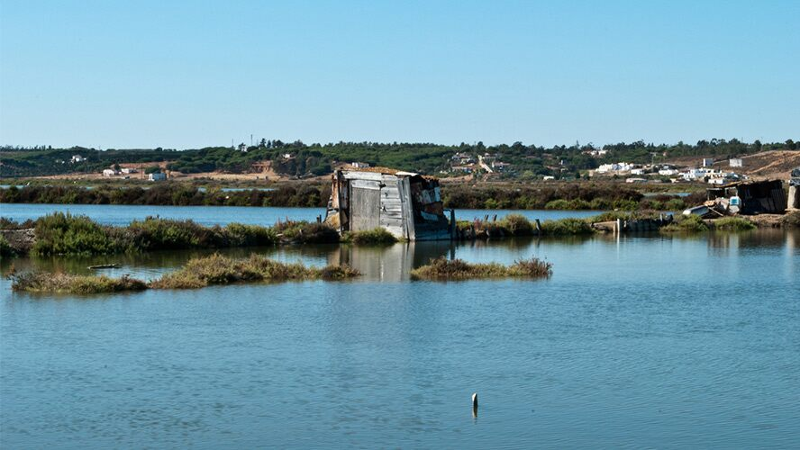 marismas Huelva