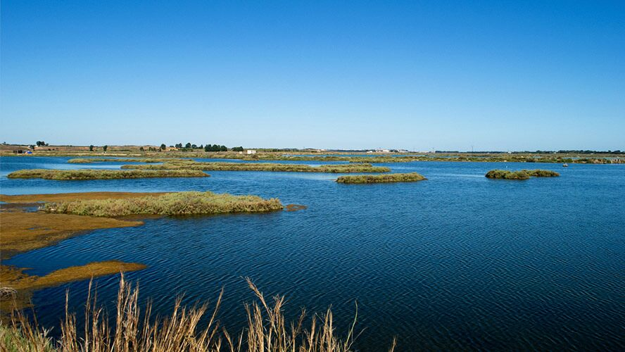 Marismas de Isla Cristina.