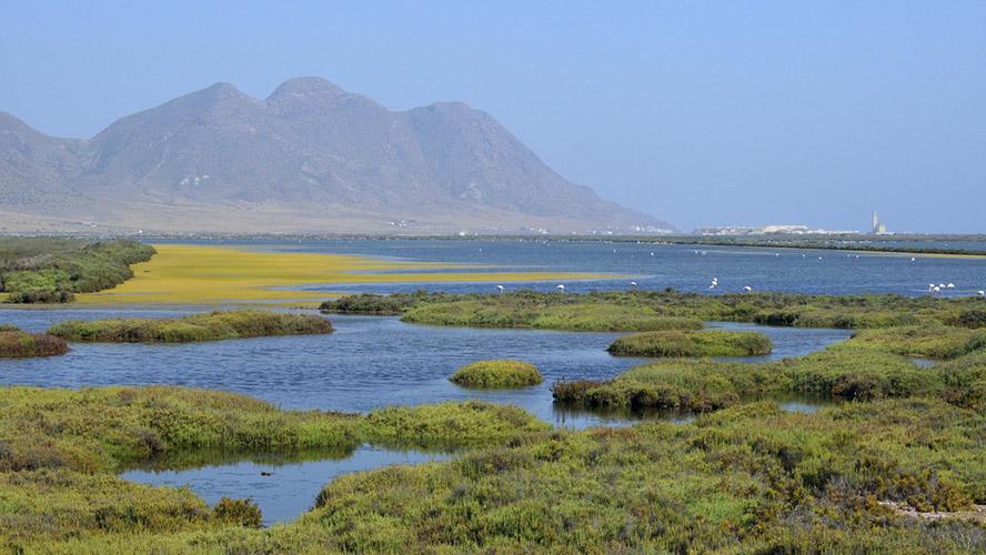 Parque Natura Cabo de Gata