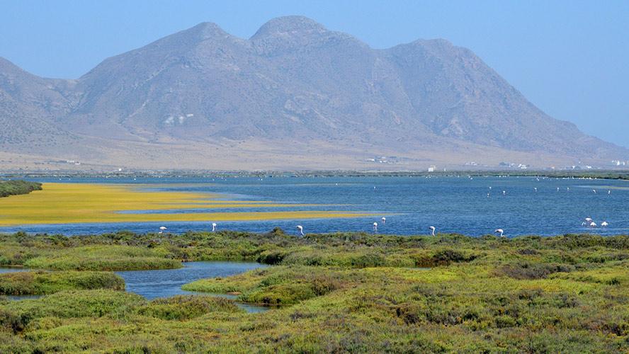 Playa de las Salinas