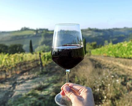 Vinos Extremadura