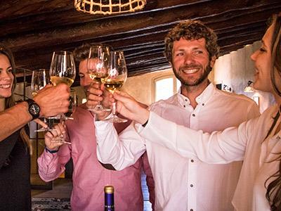 visitas viñedos barcelona