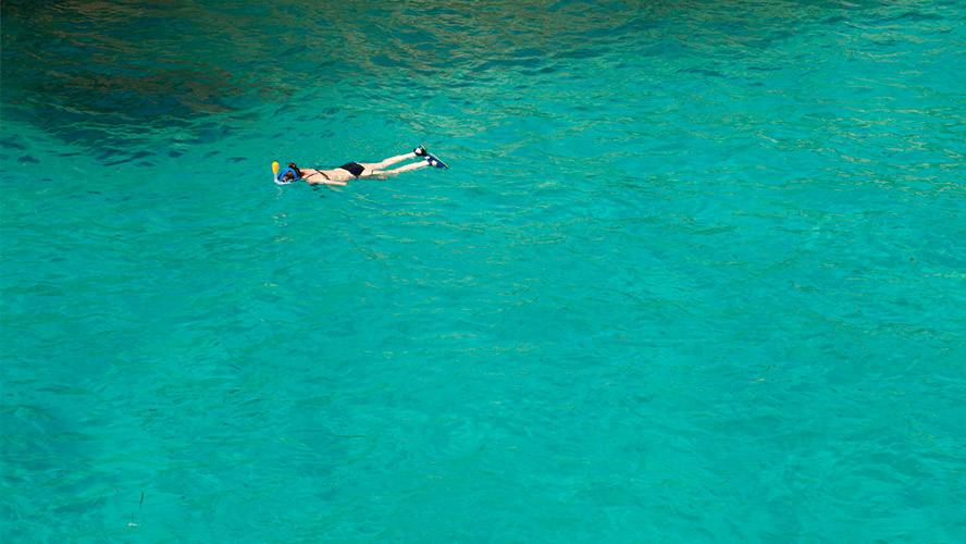 buceo en las aguas de Ibiza