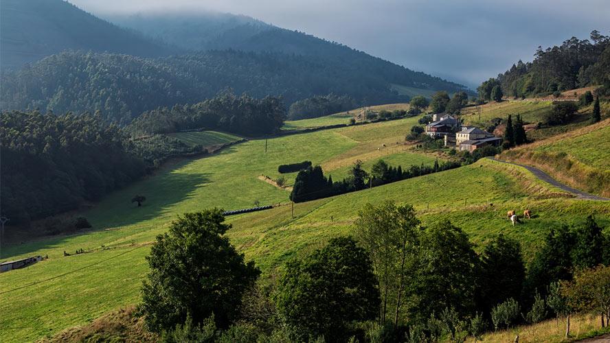 los oscos asturias