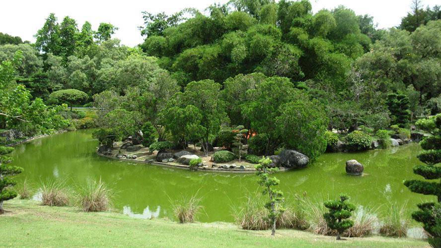 jardin botanico santo domingo