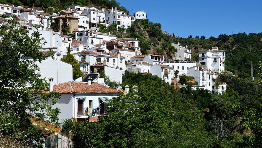 benaluria_valle-del-genal_malaga