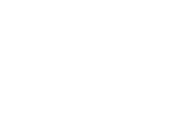 Barcelo First Sight Logo