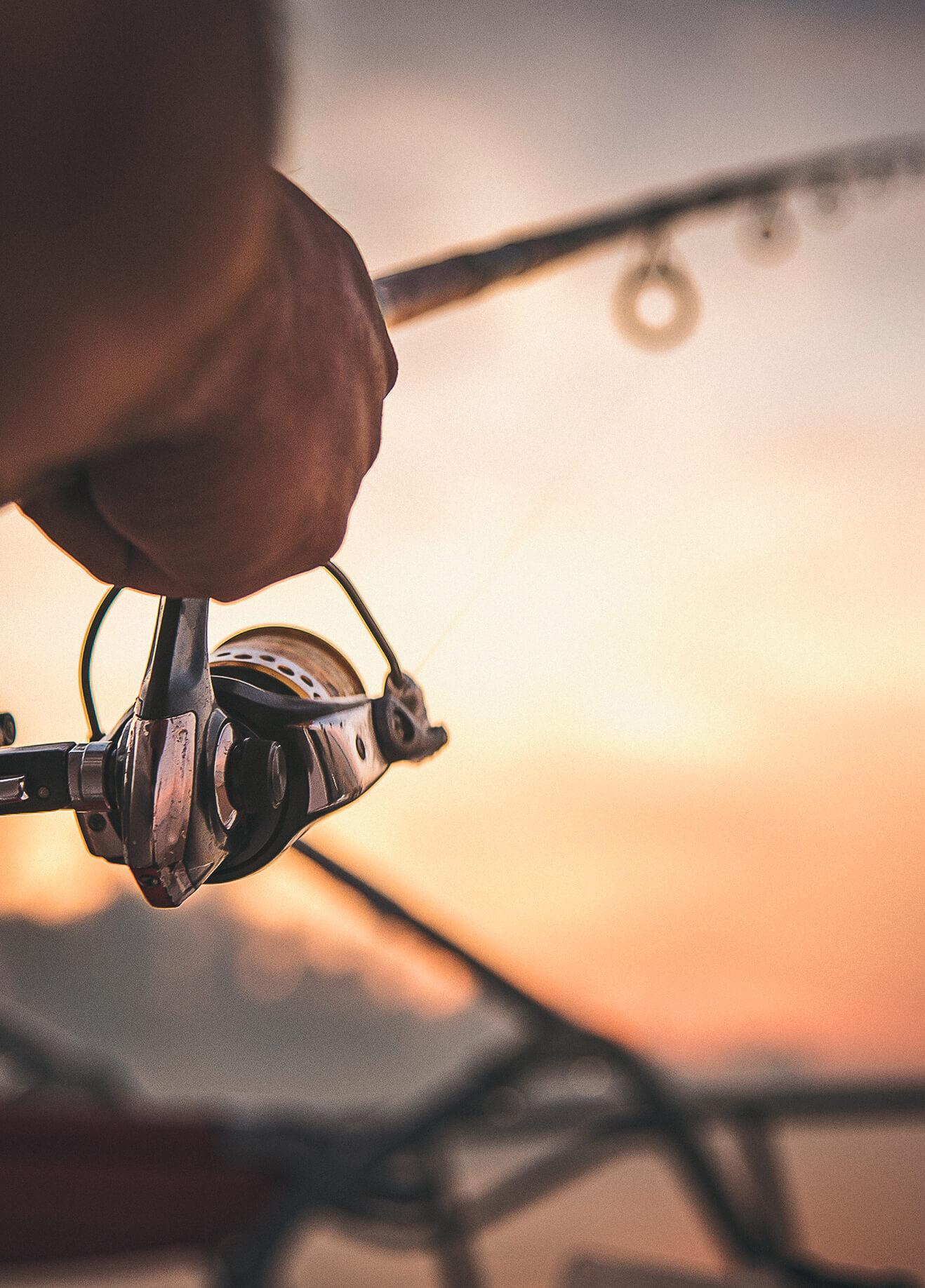 Teneriffa-Ausflüge: Auf der Suche nach dem blauen Marlin