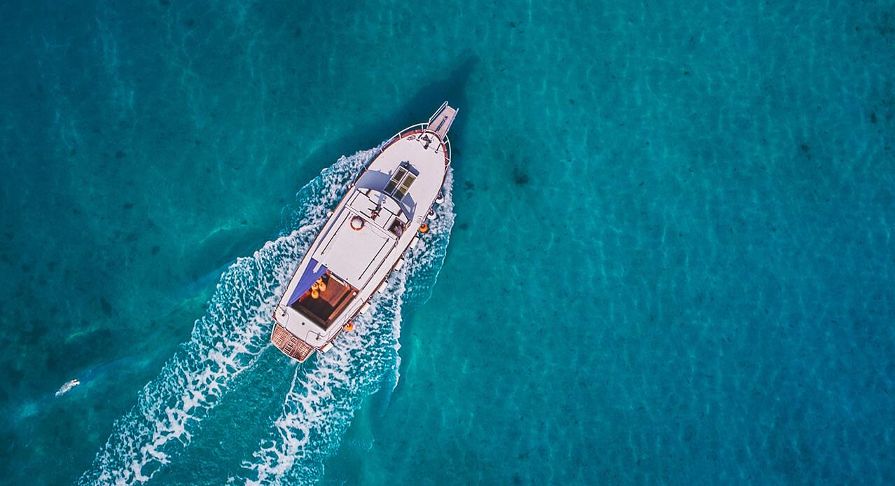Delfin- und Walbeobachtung Teneriffa: Ausflüge